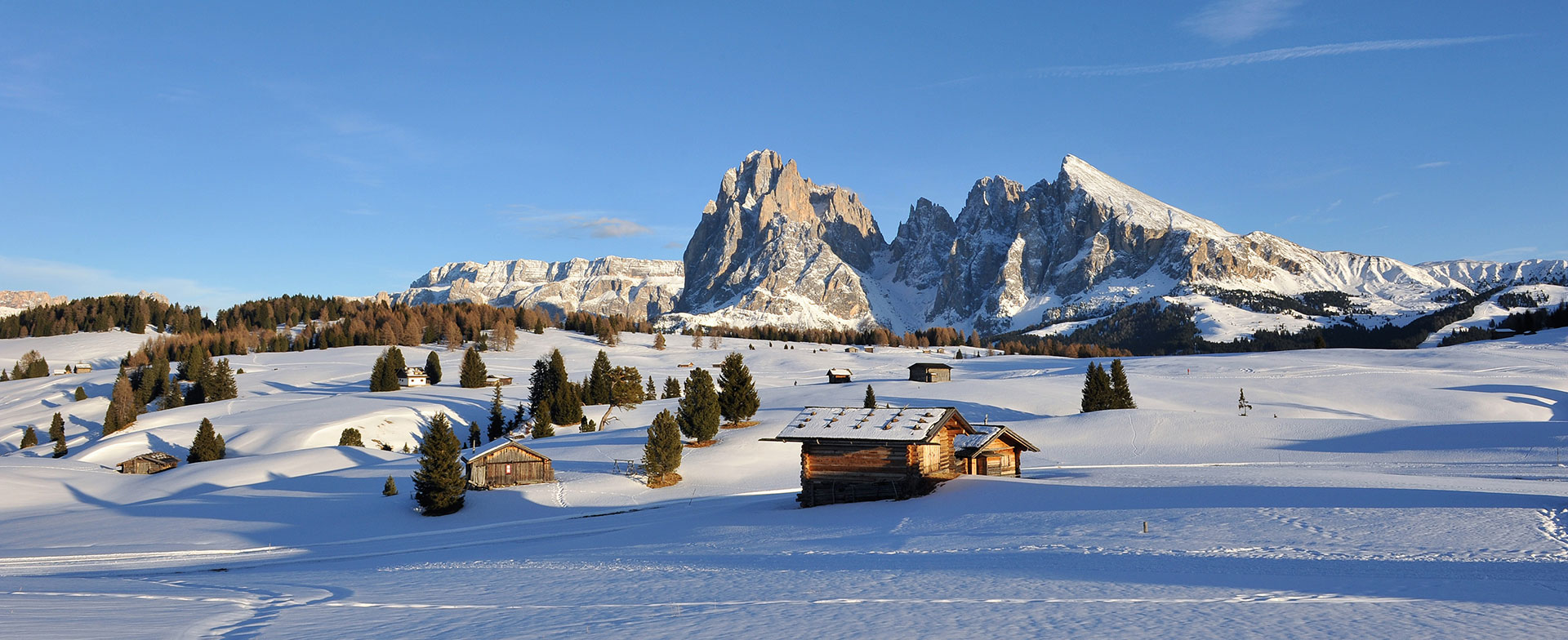 Winter activities in Selva in Val Gardena